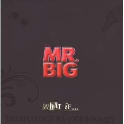 Mr. Big ‎– What If... (LP Box Set)